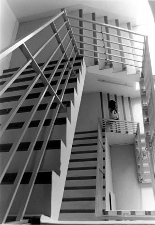 """1er Prix """"Cet escalier n'est pas droit"""""""